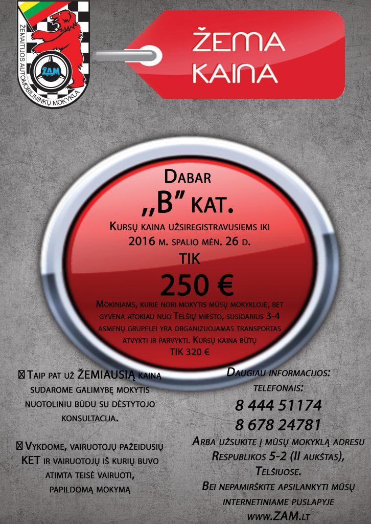 zema-kaina2